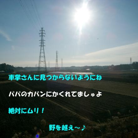 _0010907.jpg