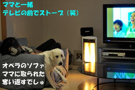 _DSC301811.jpg