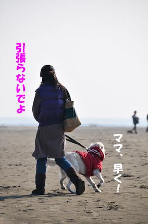 _DSC3229.jpg