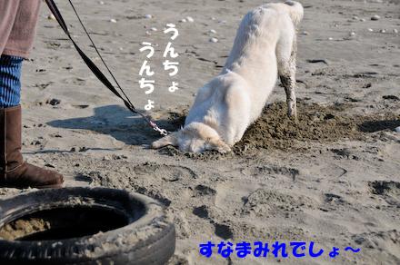 _DSC3289.jpg