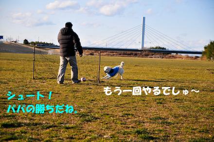 _DSC4130.jpg