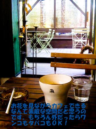 photo_20090219223811.jpg