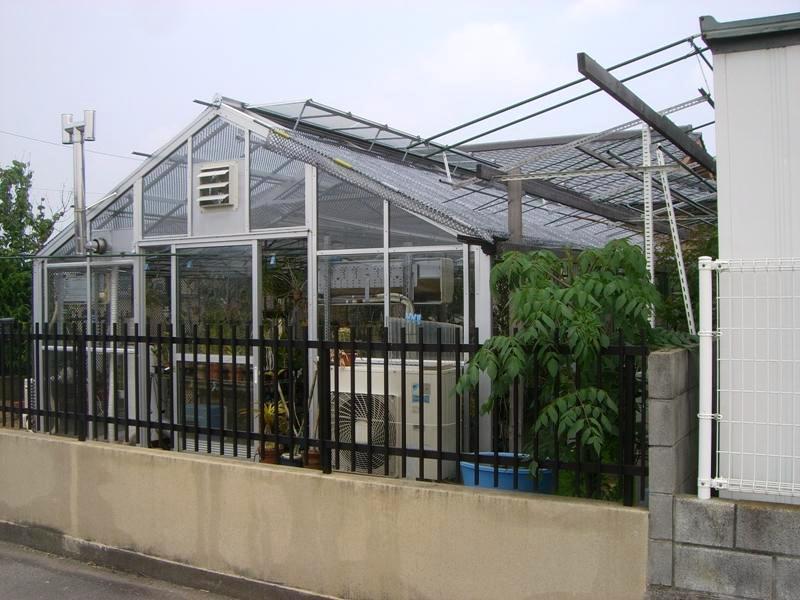 我が家の温室