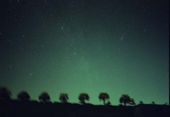 2001年しし座流星群