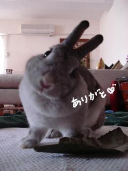 kaifukugin.jpg