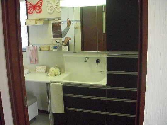 19番6モデルハウス(H21年10月10日撮影) 洗面所550