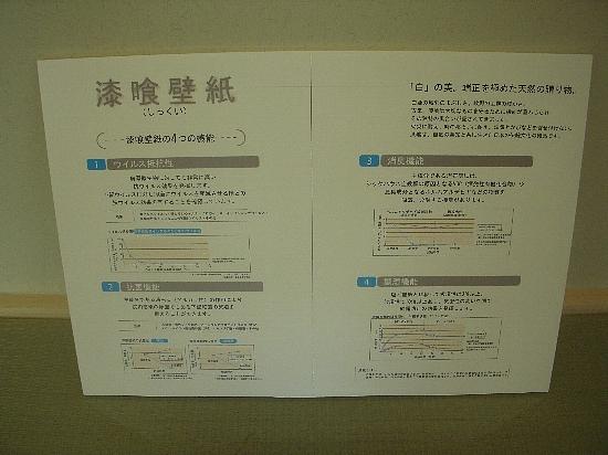 19番6モデルハウス(H21年10月10日撮影) 漆喰壁紙パネル550
