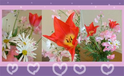 2-11花