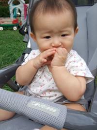 この赤ちゃんせんべいおいしいのよね~