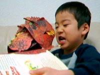 飛び出す絵本『恐竜大図鑑』で「ガオーッ!」