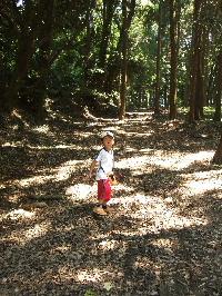 かぶと森へ