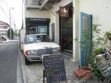 20110924山猫2