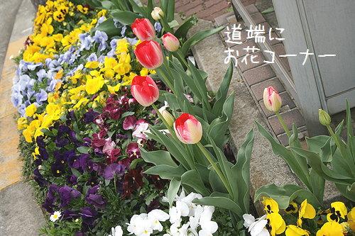 お花ちれーい