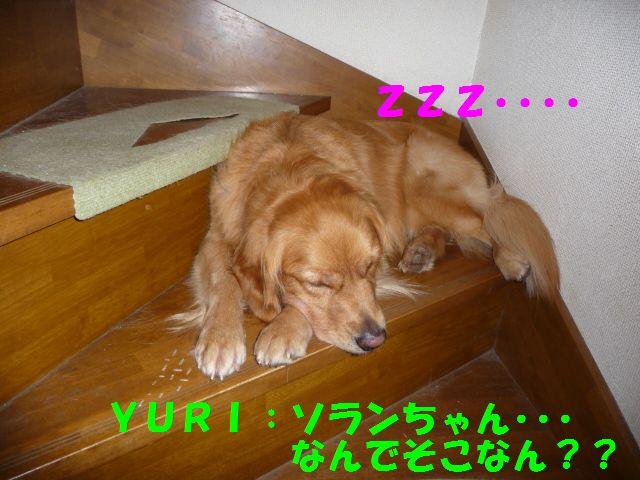 003_20090904024342.jpg