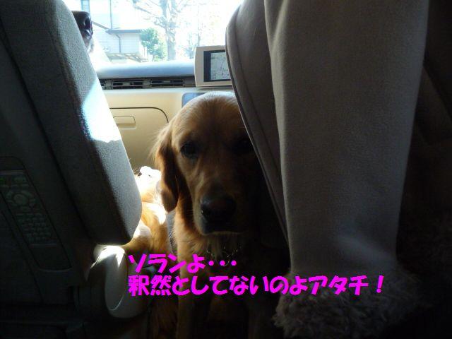 004_20081126003212.jpg