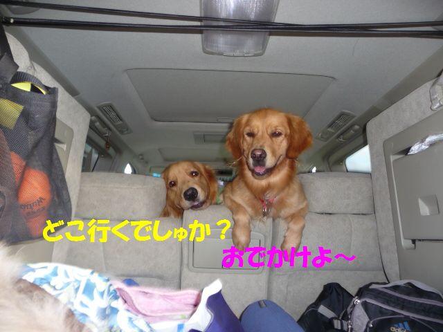 005_20091013224640.jpg