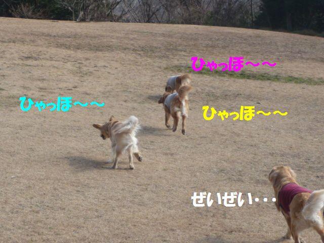 008_20090131004146.jpg