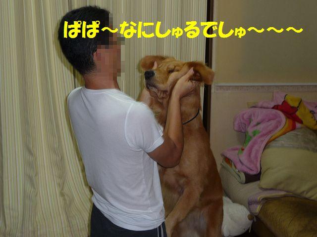 010_20081024175037.jpg