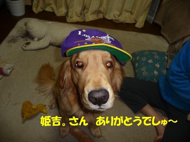 015_20081218004934.jpg