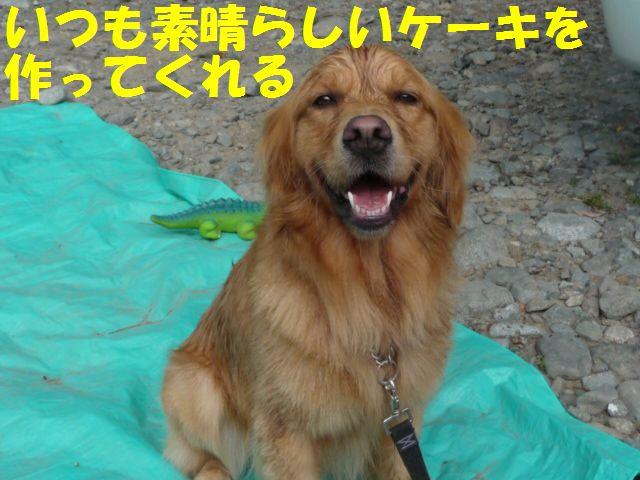 036_20091031044603.jpg