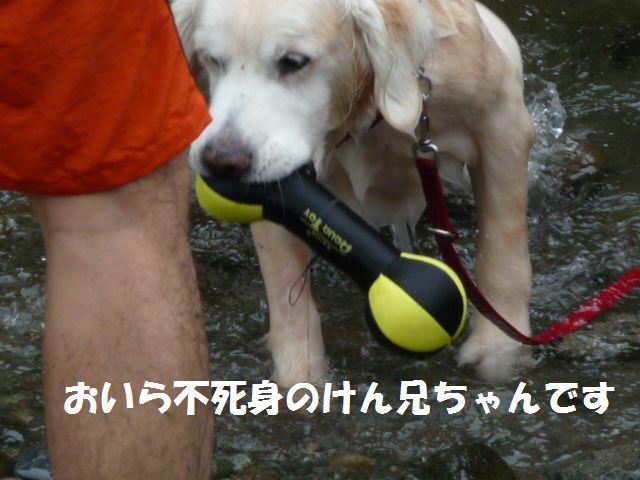 049_20090830234614.jpg