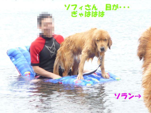 065_20090721003152.jpg