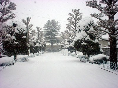 snow_0012_road-thumb-400x300.jpg