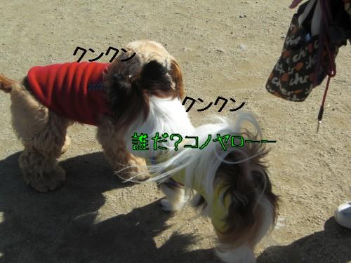 1_20090221201113.jpg