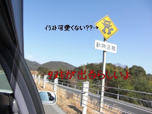 2_20090215194502.jpg