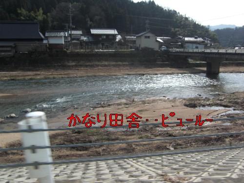 3_20090215194654.jpg
