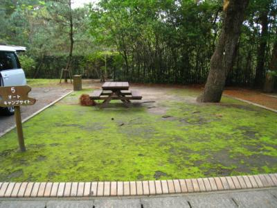 キャンプ吹上海浜公園 064