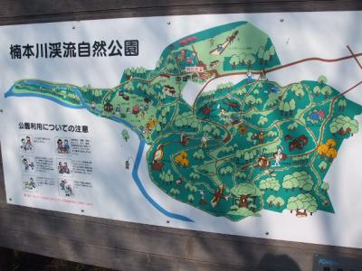楠本川キャンプ 134