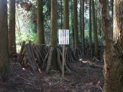 楠本川キャンプ 135