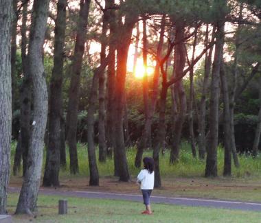 吹上海浜公園キャンプ 137