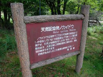 えびの高原キャンプ 057 - コピー
