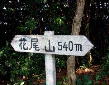 とうこちゃん&花尾岳 037