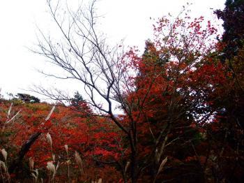 ハロウィン&新燃岳 071 - コピー