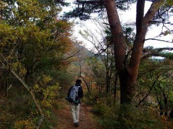 ハロウィン&新燃岳 070 - コピー