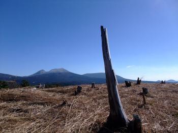 栗野岳2009 045 - コピー