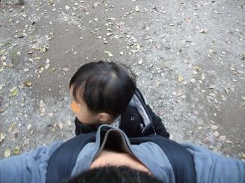 城山歩き&オオノガラ岳 023
