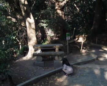 城山歩き&オオノガラ岳 010