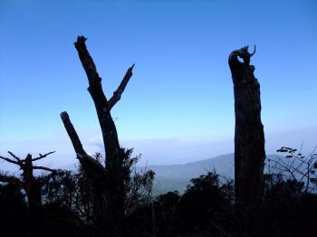 城山歩き&オオノガラ岳 047 - コピー