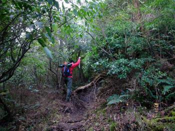 城山歩き&オオノガラ岳 043 - コピー