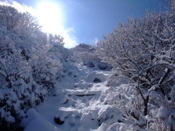 雪の韓国岳 040 - コピー