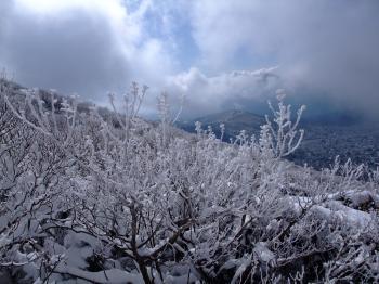 雪の韓国岳 157 - コピー