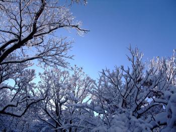 雪の韓国岳 037 - コピー