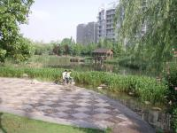 マンション南湖