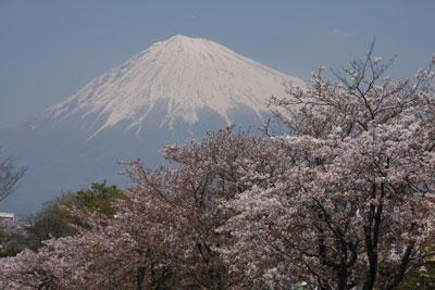 0904さくら富士宮