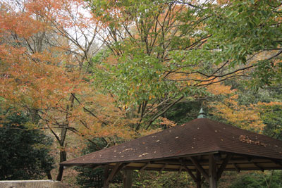 0911駿河平2