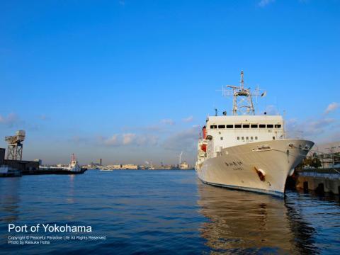 赤レンガパークの横にある横浜海上保安庁の船